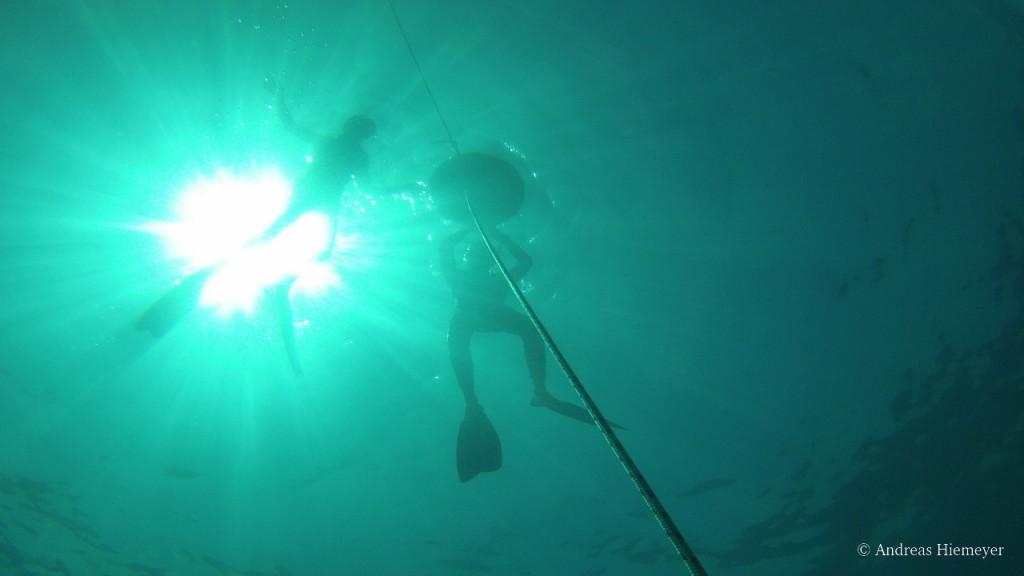 Freedivingtraining